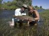 local creek fishing