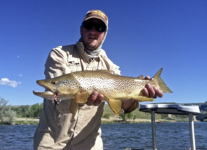 Wind river wyoming fishing report for Fishing in the wind