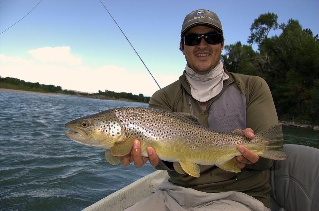 Big Montana Brown Trout