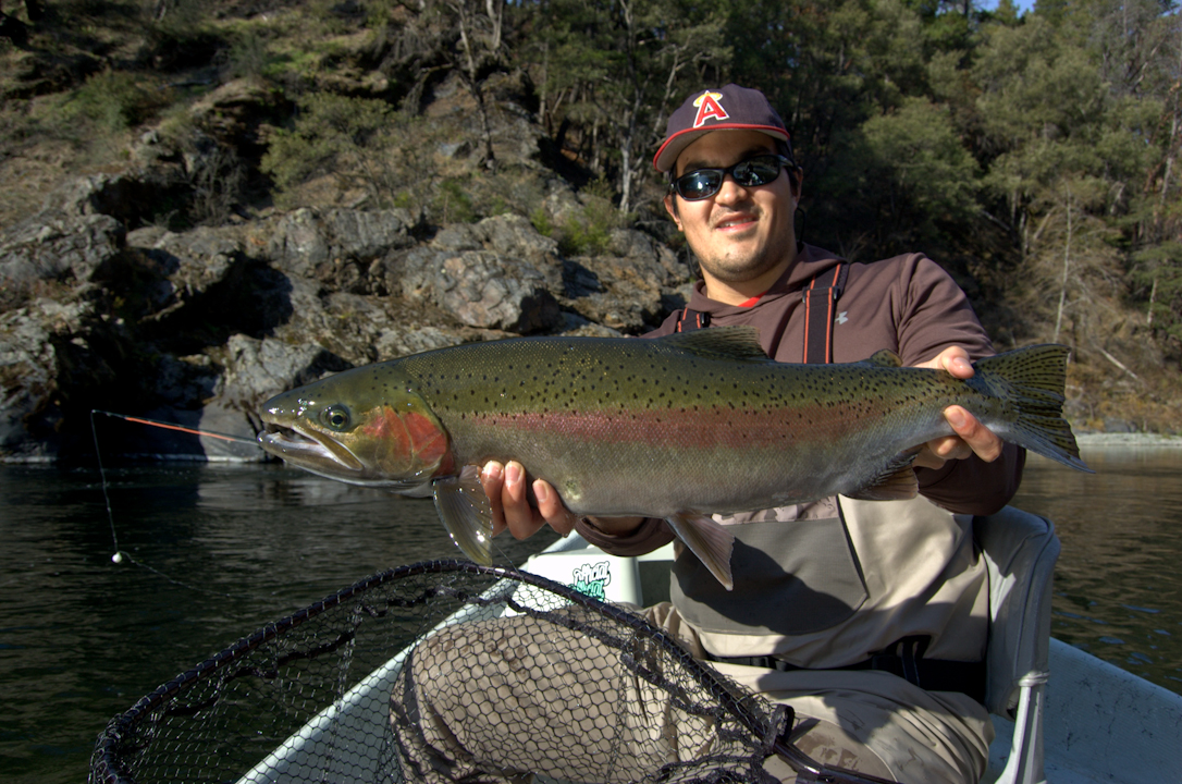 Fishing report 307 outfitters part 2 for Steelhead fishing california