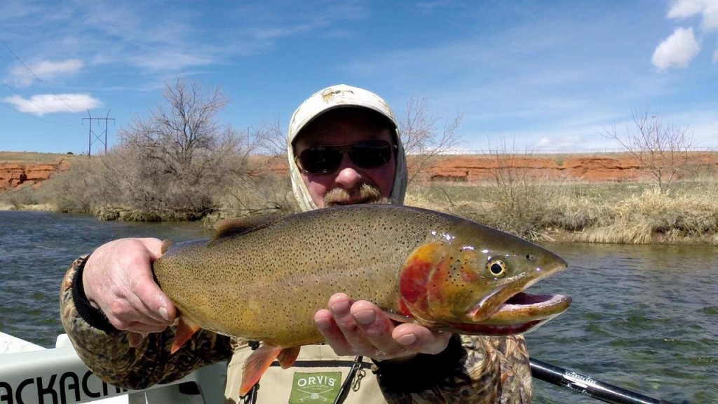Steve beaz with a beautfiul Wyoming Cuttthroat