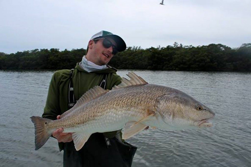 Florida Redfish
